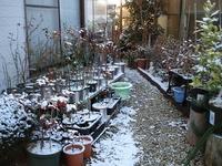 冬景色02.jpg