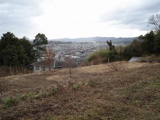 畑からの景色.jpg