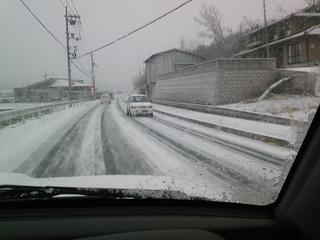 20100113雪.jpg