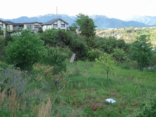 21_2010待ち桶.jpg
